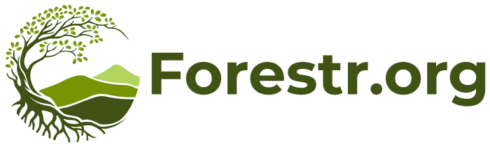 Forestr.org